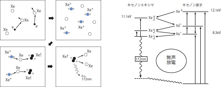 エキシマランプ/エキシマ光照射...